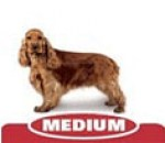 Royal_Canin_midi_dog6.jpg