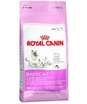 Royal Canin Babycat 2