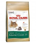 Royal Canin Maine Coon1