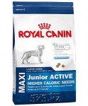 Royal Canin Maxi Junior Active 152