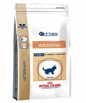 Royal Canin Weaning 2
