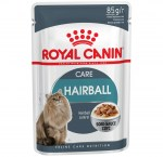 f_hairball-care-in-gravy.png