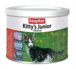 kittys_junior3